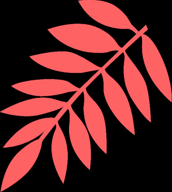 plante_background
